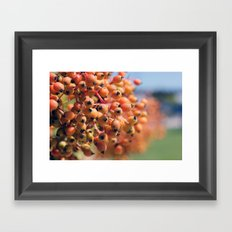 Berry Bright Framed Art Print