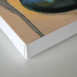 blackwidow Canvas Print