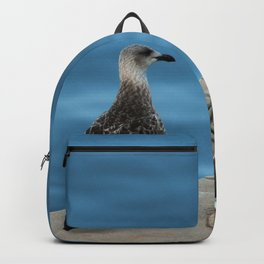 Seagull Bird Portrait Sea Pier Backpack