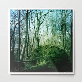 earth tree. Metal Print