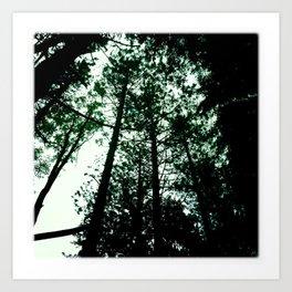 dreaming of tree tops Art Print