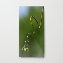 Spring Shaped Passion Flower Tendril  Metal Print
