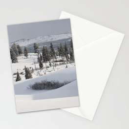 Yellowstone National Park - Blacktail Deer Plateau Panorama Stationery Cards