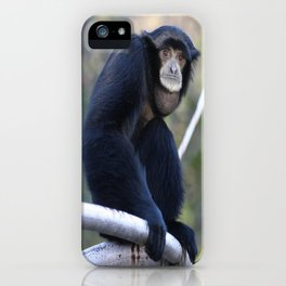 Sumatran Gibbon iPhone Case
