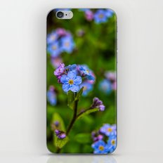 Forget-me-nots In The Rain iPhone & iPod Skin
