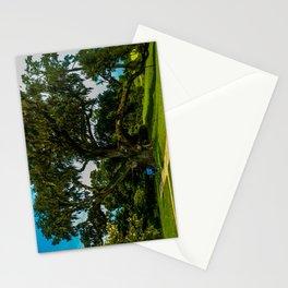 A mighty mighty live oak Stationery Cards