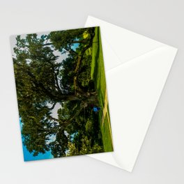 A mighty mighty live oak Stationery Cards