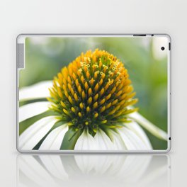 Ecinacea Laptop & iPad Skin