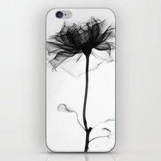 Pretty Xray iPhone & iPod Skin