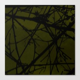 through the grapevine Canvas Print