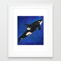 killer whale Framed Art Prints featuring Killer Whale by Ben Geiger