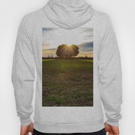 Sunset in the field Hoody