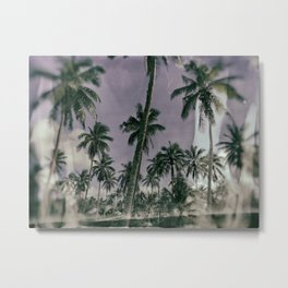 Coconut Farm Metal Print