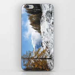 The Confluence Of The Seasons iPhone Skin