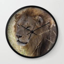 Peaceful lion face Wall Clock