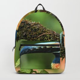 Gorgeous Gracious Rain Forest Bird On Tree Rainbow Feathers Beak Zoom UHD Backpack