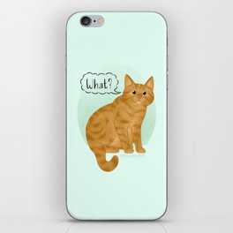 What's New Kitty Cat iPhone Skin
