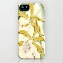 Sophronitis grandis (as Laelia grandis) Curtis' 92 (Ser. 3 no. 22) pl. 5553 (1866) iPhone Case