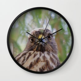 Hawk Eyes in the Willow Wall Clock