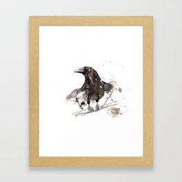 Blackcrow Framed Art Print
