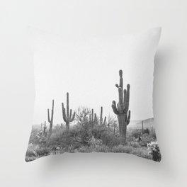 DESERT III / Scottsdale, Arizona Throw Pillow