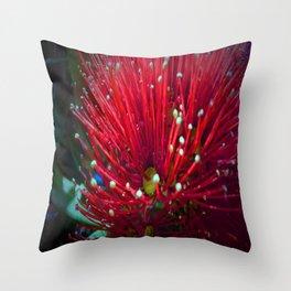 Pohutakawa Throw Pillow