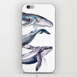 Humpback Whales, three whales illustration iPhone Skin