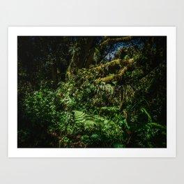 5,970' Kilimanjaro National Park Art Print