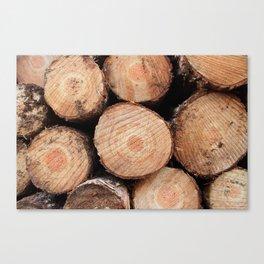 Sawn logs Canvas Print