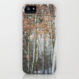 linz 14 iPhone Case