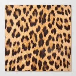 primitive trendy stylish fashionable safari animal leopard Canvas Print
