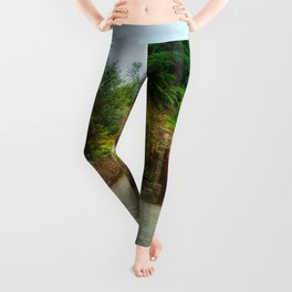 Country Stables Leggings