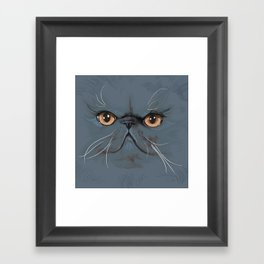 Persian Cat Framed Art Print