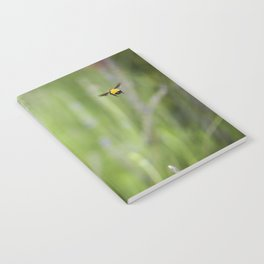 Imposible flight Notebook