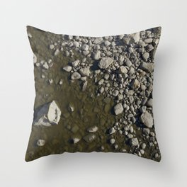 Rivers Bend Throw Pillow