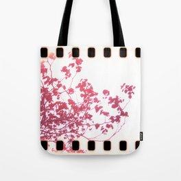 Holga x-processed pink spring tree Tote Bag