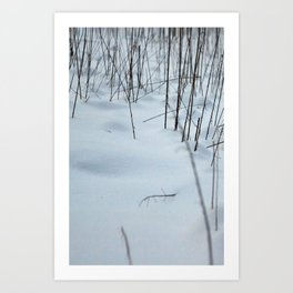 Snow drifts Art Print
