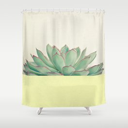 Succulent Dip II Shower Curtain