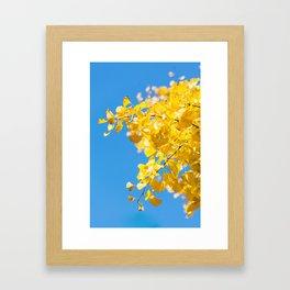 Sky and Leaf Framed Art Print