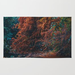 Nature on fire Rug