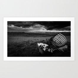 Bovine Tragedy in the Chihuahua Desert (Fine Art Landscape Photography) Art Print