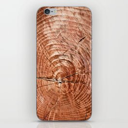 Tree Rings iPhone Skin