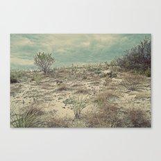 Nautica:  The Dune Vigil Canvas Print