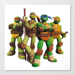Ninja Turtles - Teenage Mutant Canvas Print