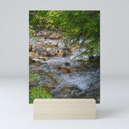 Eagle Creek - Glacier National Park, BC, Canada Mini Art Print