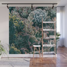 Mornings In The Succulent Garden #1 Wall Mural