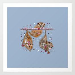 Possum trio on a branch - Blue Grey Art Print