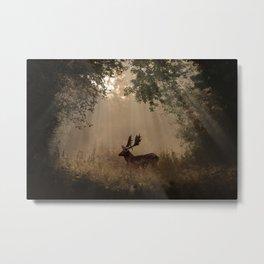 Sunbeam Deer Metal Print