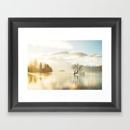 That Wanaka tree Framed Art Print