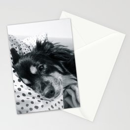 Jamie relaxing Stationery Cards